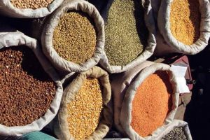 Drop in price of pulses reveals flaws in agriculture policy