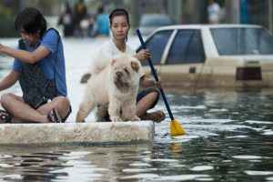 Over 6,000 displaced as floods hit Indonesia