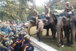 Elephant safari resumes in Rajaji Tiger Reserve after one decade