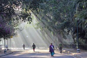 Sunny, cold morning in Delhi