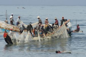 Sri Lanka arrests 13 Indian fishermen