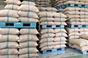 Govt scraps wheat import duty to boost supplies
