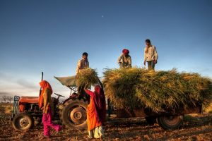Govt sanctions Rs.21k crore to help farmers