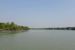 Sunderbans goes hi-tech to keep infiltrators, smugglers at bay