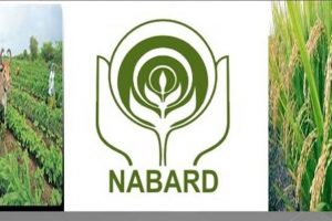 Bengal to get Rs.900-1,000 cr from Nabard
