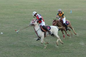 Manipur to develop sanctuary for its polo ponies