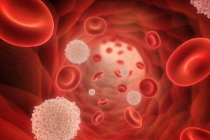 New cause of high blood pressure found