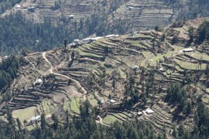 Separate hill farming policy for Uttarakhand sought