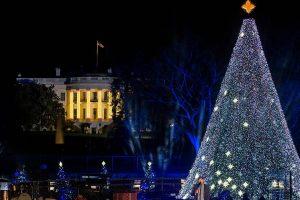 Obama's last Christmas tree lighting