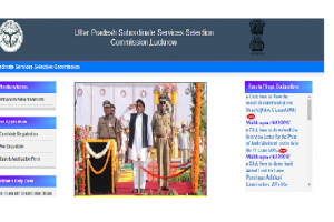 UPSSSC to fill 293 posts, apply online before Dec 17 at www.upsssc.gov.in
