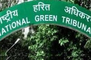 NGT fines government colleges, malls for defying green laws