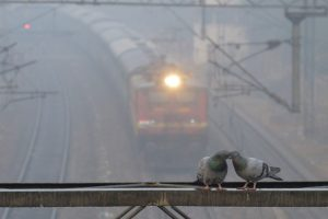 Cloudy Tuesday morning in Delhi, 15 trains cancelled