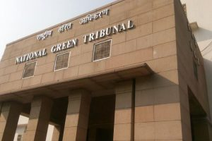Steel pickling units will be shut: Delhi govt to NGT