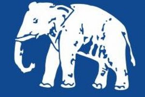 Three senior BSP leaders expelled from party