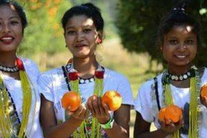 Adventure, music fest gets underway in Arunachal Pradesh