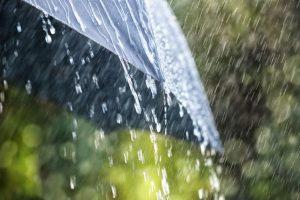 Conserve the rain