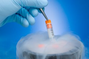 Stem cells to restore testosterone?