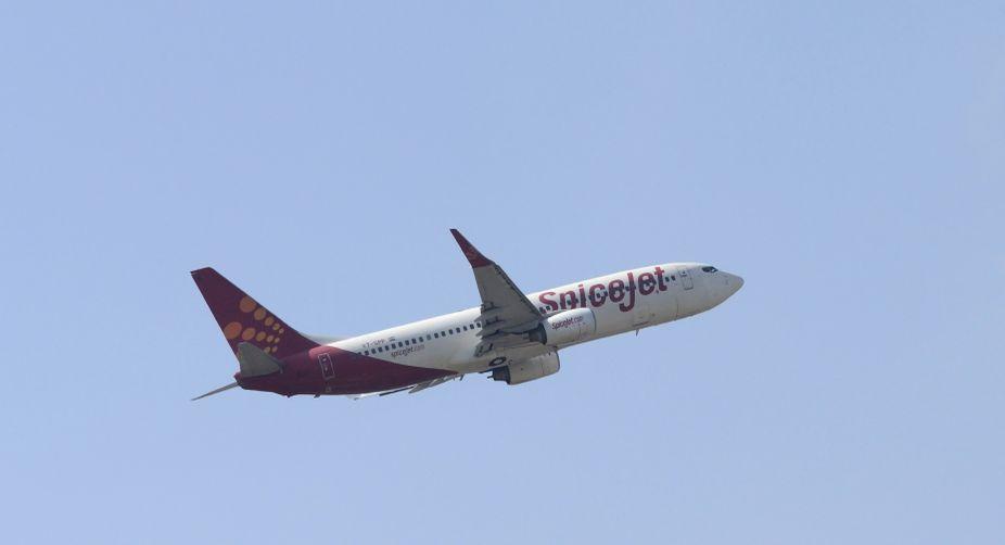 Domestic air passenger traffic, air passenger traffic, domestic airlines