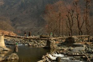 Night temperatures rise above freezing point in J-K