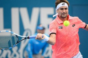David Ferrer falls in second round of Brisbane International