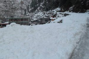 Shimla, Manali witness fresh snowfall; cold wave intensifies