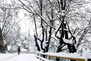 At minus 10 degrees Celsius, Kashmir shivers in intense cold