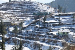 Sunny Monday in Himachal, but snow blankets Shimla, Manali