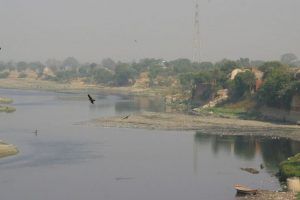 Yamuna reduced to sewer line in Delhi: NGT