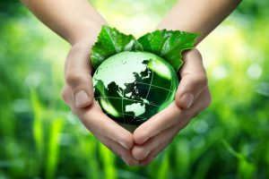 Environmental prophet