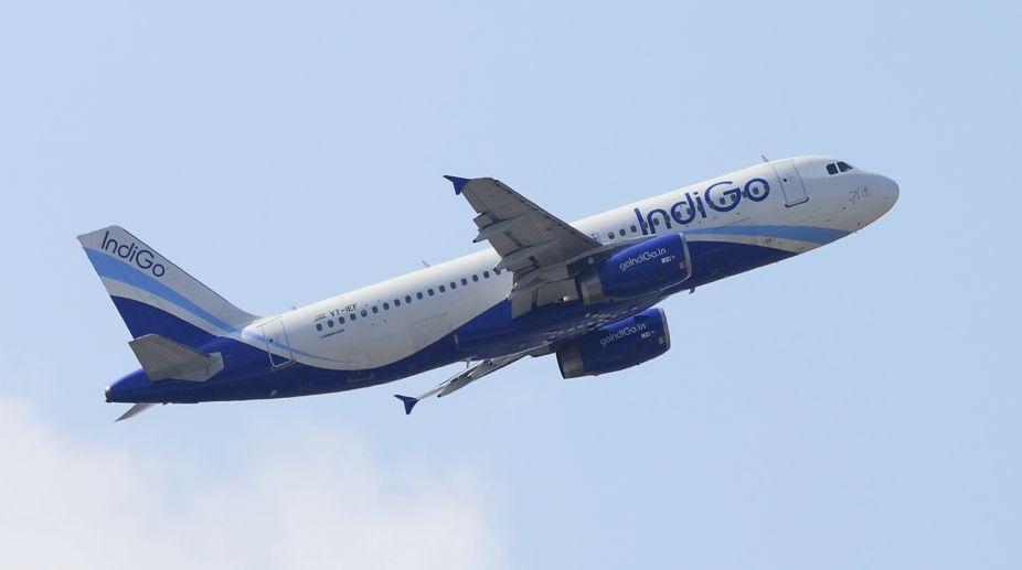 IndiGo, IndiGo airlines, IndiGo flight, A320neo aircraft