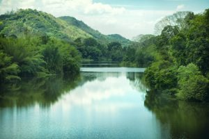 Experts for trans-boundary cooperation on Brahmaputra basin
