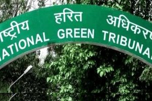 Fresh plea in NGT against exemption to realty projects