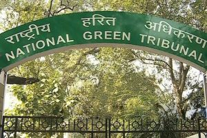 Posters on DU walls: NGT summons chief election officer