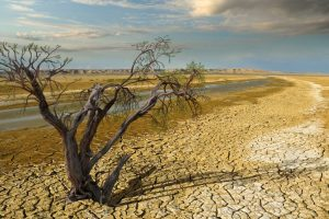 Sri Lanka warns of worst drought in 40 years