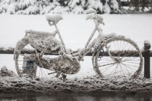 In a snow-clad world