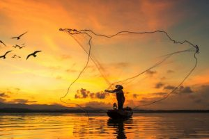 New mobile app to help fishermen increase their catch