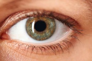 Vision keeps developing until mid-life