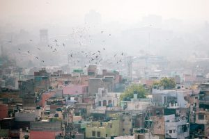 Delhi air quality very poor, SC-appointed panel calls for tough action