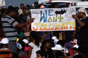Centre urges people to call off Jallikattu protest