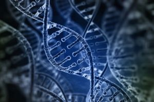 83 new DNA changes influencing height identified