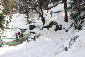 Himachal Pradesh to witness more snow, rain this weekend