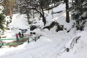 Cold returns in Himachal Pradesh after snow, rain