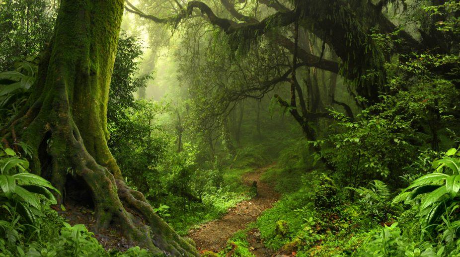Green cover, Forest Report 2017, Harsh Vardhan, Mahesh Sharma