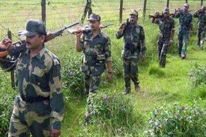 Pak intruder shot dead by BSF in Pathankot
