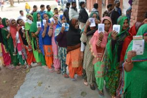 Helpline launched in HP for info on assembly polls