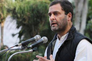 Don't single out Rahul for loss: Singhvi