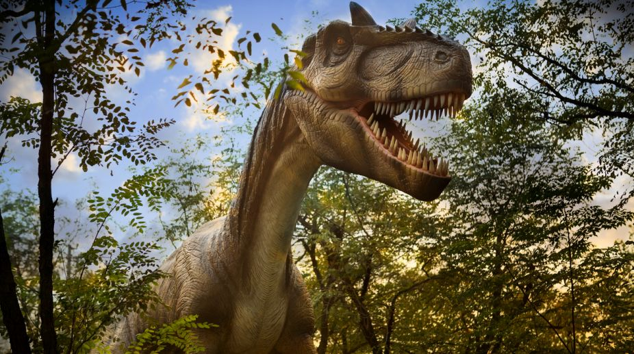 Dinosaur killing asteroid wiped out first tree-dwelling birds: Study