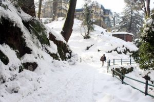 Fresh snowfall, rains revive cold conditions in Himachal