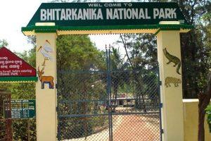 Odisha hopeful of world heritage tag for Bhitarkanika National Park