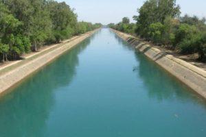 Haryana govt plans to rejuvenate canal system